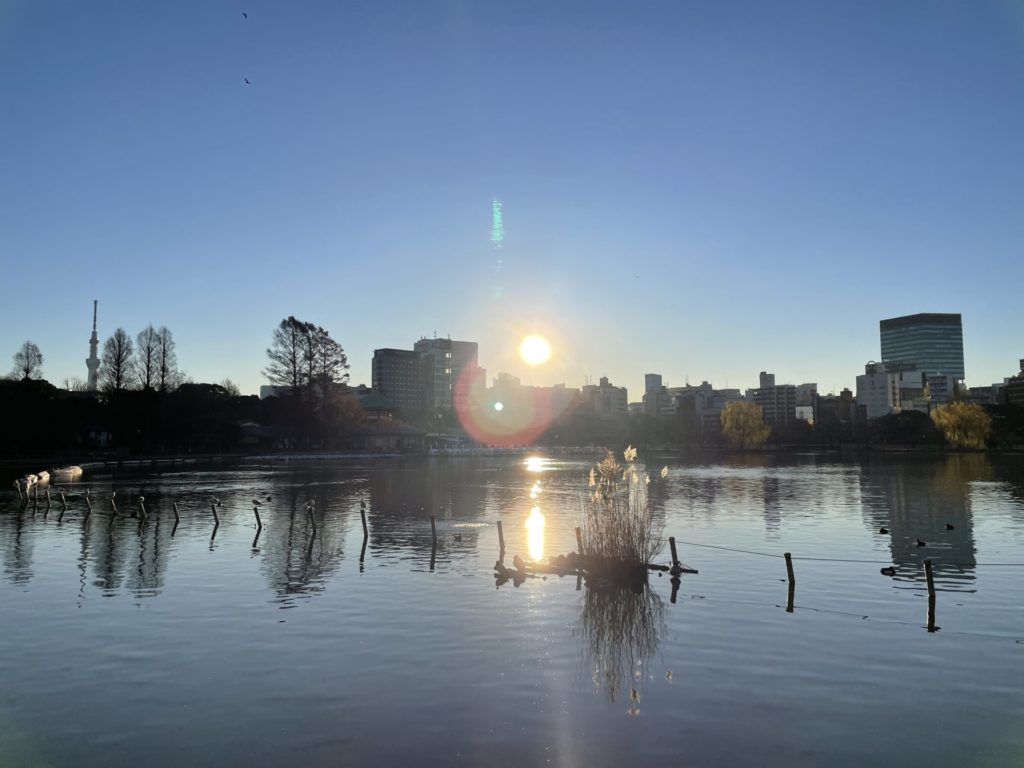 New Year's First Sunrise from Ueno Park